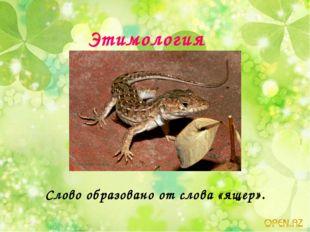Этимология Слово образовано от слова «ящер».