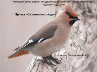 Проект «Зимующие птицы» Составили: Пархоменко Е.А. Муниципальное бюджетное до