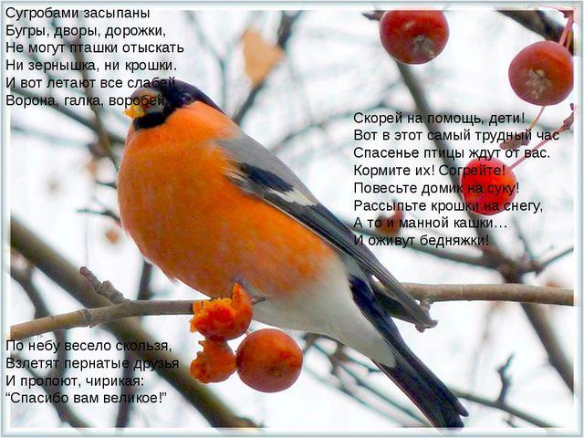 Сугробами засыпаны Бугры, дворы, дорожки, Не могут пташки отыскать Ни зернышк...