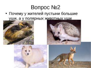 Вопрос №2 Почему у жителей пустыни большие уши, а у полярных животных уши мал