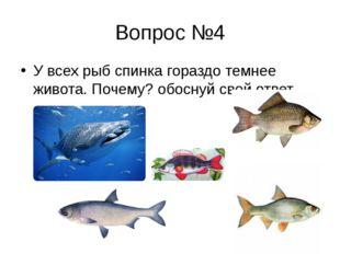 Вопрос №4 У всех рыб спинка гораздо темнее живота. Почему? обоснуй свой ответ.