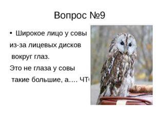 Вопрос №9 Широкое лицо у совы из-за лицевых дисков вокруг глаз. Это не глаза