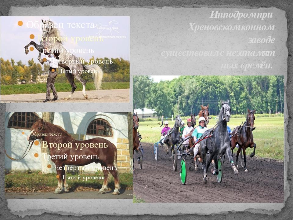Ипподром при Хреновском конном заводе существовал с незапамят ных времён.