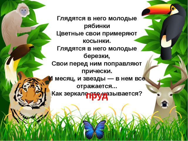 К семейству каких домашних птиц принадлежит героиня русской народной сказки,...