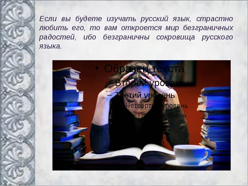 Если вы будете изучать русский язык, страстно любить его, то вам откроется ми...