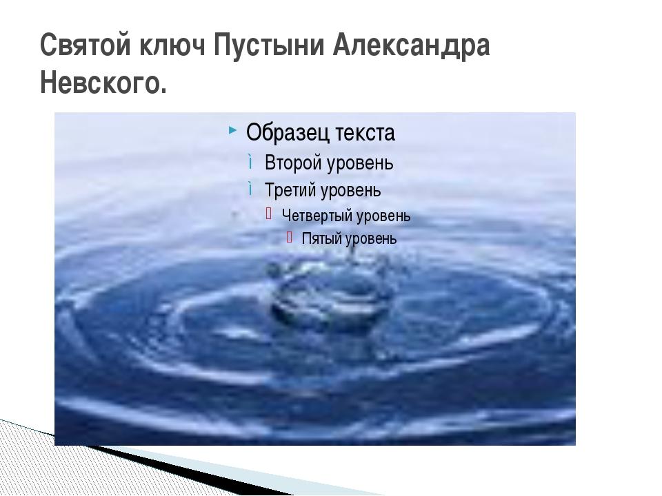 Святой ключ Пустыни Александра Невского.