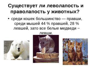 Существует ли леволапость и праволапость у животных? среди кошек большинство