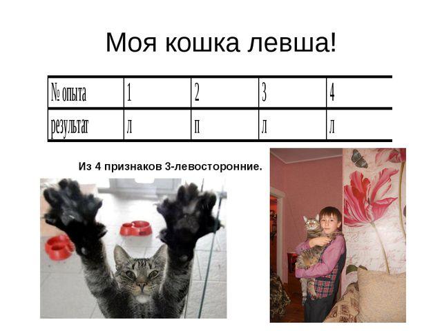 Моя кошка левша! Из 4 признаков 3-левосторонние.