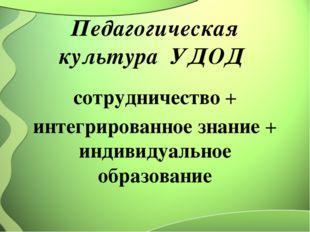 Педагогическая культура УДОД сотрудничество + интегрированное знание + индиви