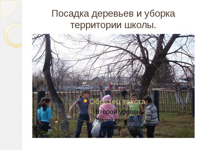 Посадка деревьев и уборка территории школы.