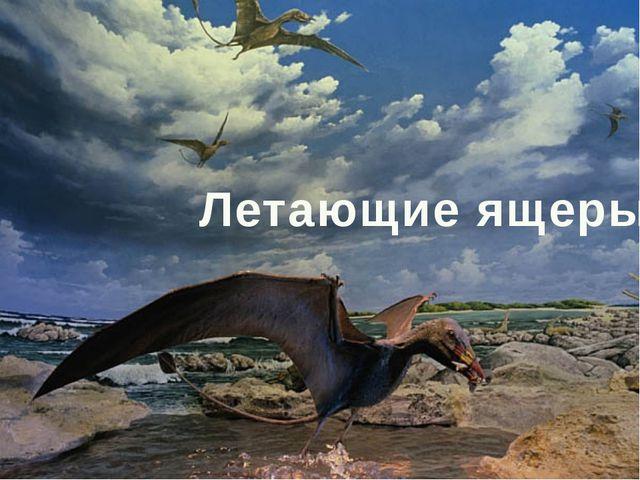 Летающие ящеры
