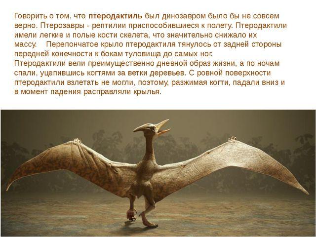 Говорить о том. чтоптеродактильбыл динозавром было бы не совсем верно. Птер...