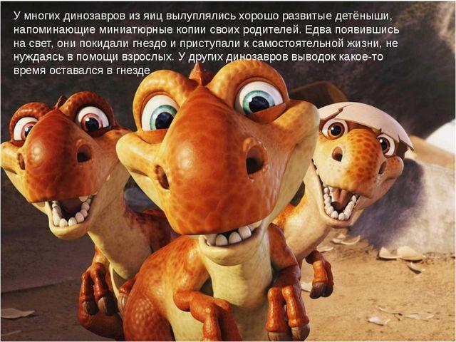 У многих динозавров из яиц вылуплялись хорошо развитые детёныши, напоминающие...