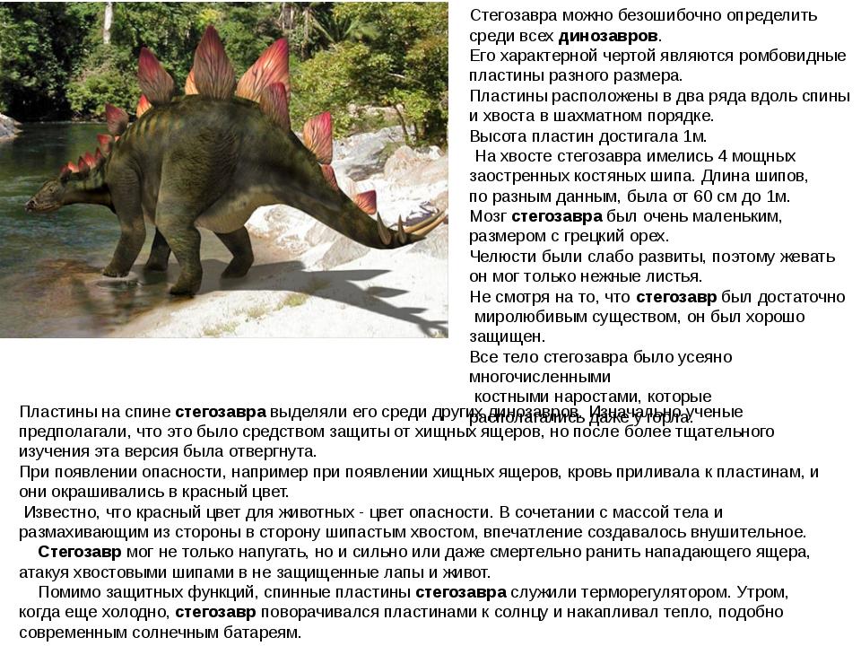 Стегозавра можно безошибочно определить среди всехдинозавров. Его характерно...