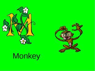 Monkey http://urazimbetov.jimdo.com/