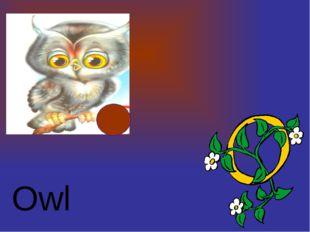 Owl http://urazimbetov.jimdo.com/