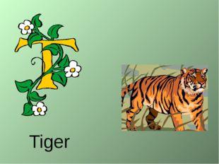 Tiger http://urazimbetov.jimdo.com/