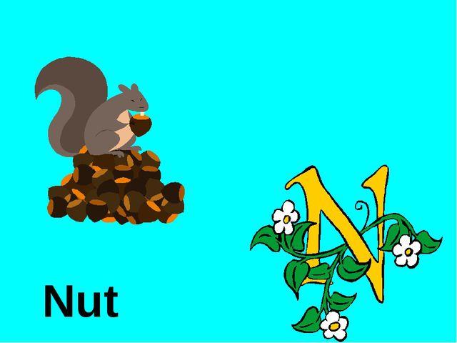 Nut http://urazimbetov.jimdo.com/