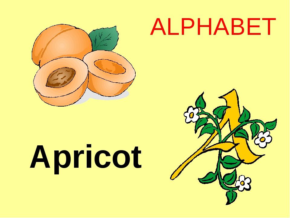 Apricot ALPHABET http://urazimbetov.jimdo.com/