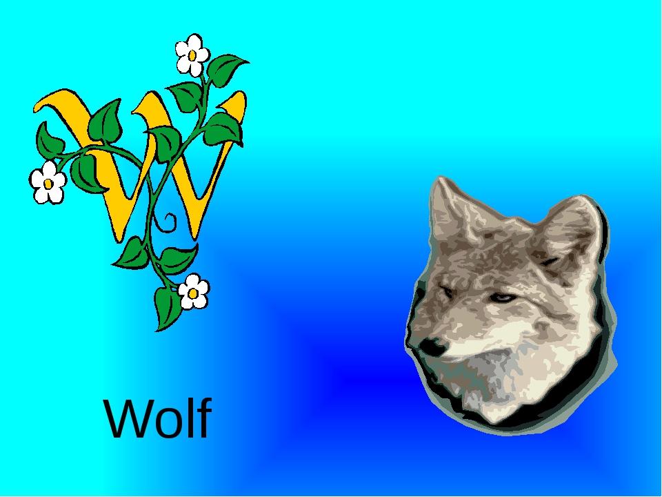 Wolf http://urazimbetov.jimdo.com/