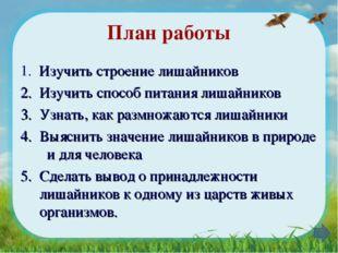 План работы 1. Изучить строение лишайников 2. Изучить способ питания лишайник