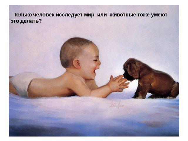 Только человек исследует мир или животные тоже умеют это делать? Только чело...