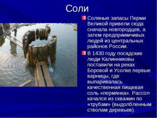 Соли Соляные запасы Перми Великой привели сюда сначала новгородцев, а затем п