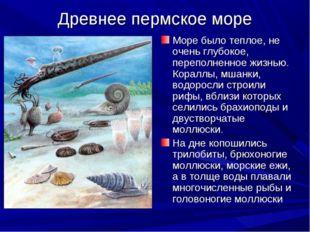 Древнее пермское море Море было теплое, не очень глубокое, переполненное жизн