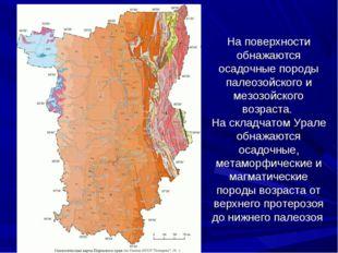 На поверхности обнажаются осадочные породы палеозойского и мезозойского возра
