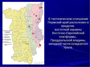 В тектоническом отношении Пермский край расположен в пределах восточной окраи