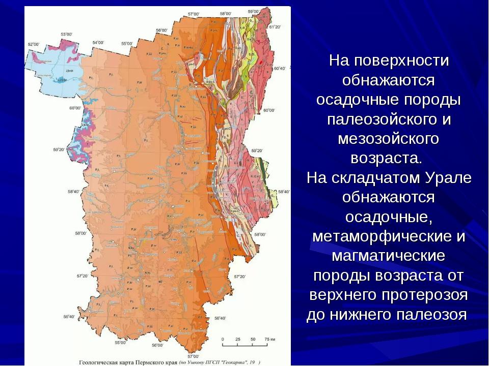 На поверхности обнажаются осадочные породы палеозойского и мезозойского возра...