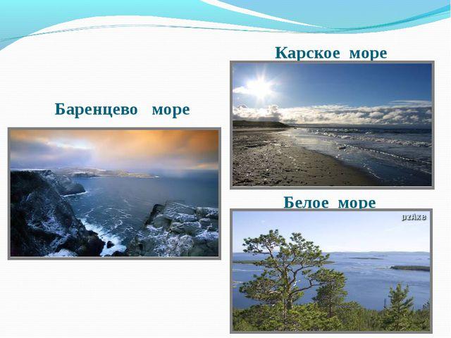 Белое море Баренцево море Карское море