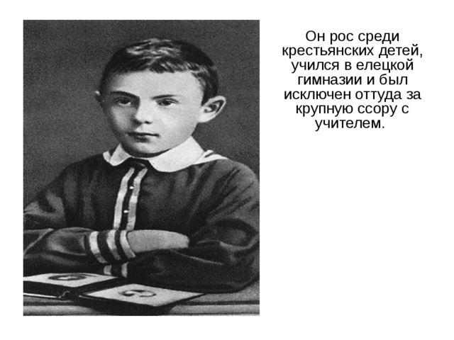Он рос среди крестьянских детей, учился в елецкой гимназии и был исключен отт...