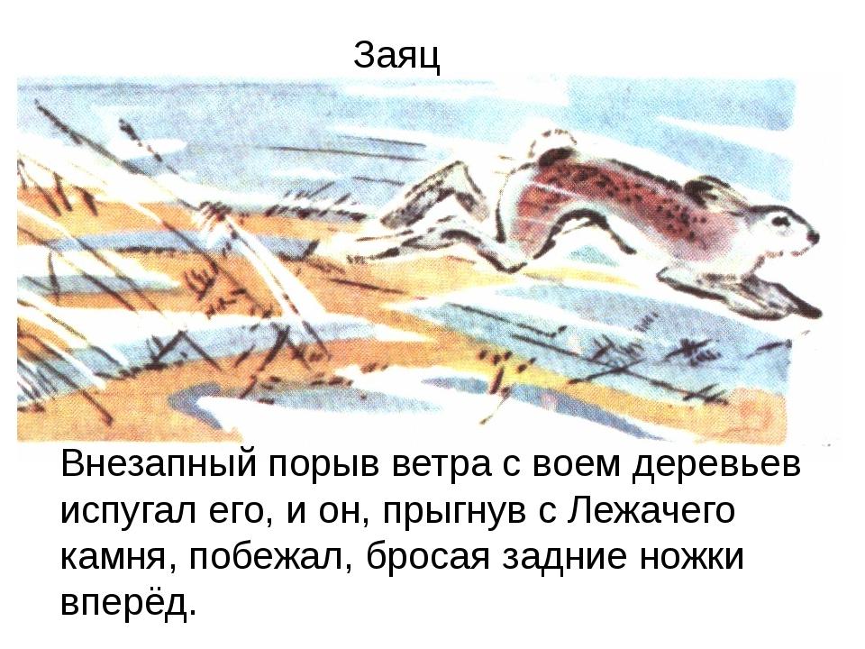 Внезапный порыв ветра с воем деревьев испугал его, и он, прыгнув с Лежачего к...