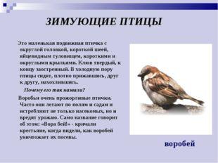 ЗИМУЮЩИЕ ПТИЦЫ Это маленькая подвижная птичка с округлой головкой, короткой