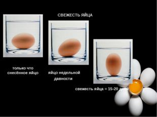 СВЕЖЕСТЬ ЯЙЦА только что снесённое яйцо яйцо недельной давности свежесть яйца