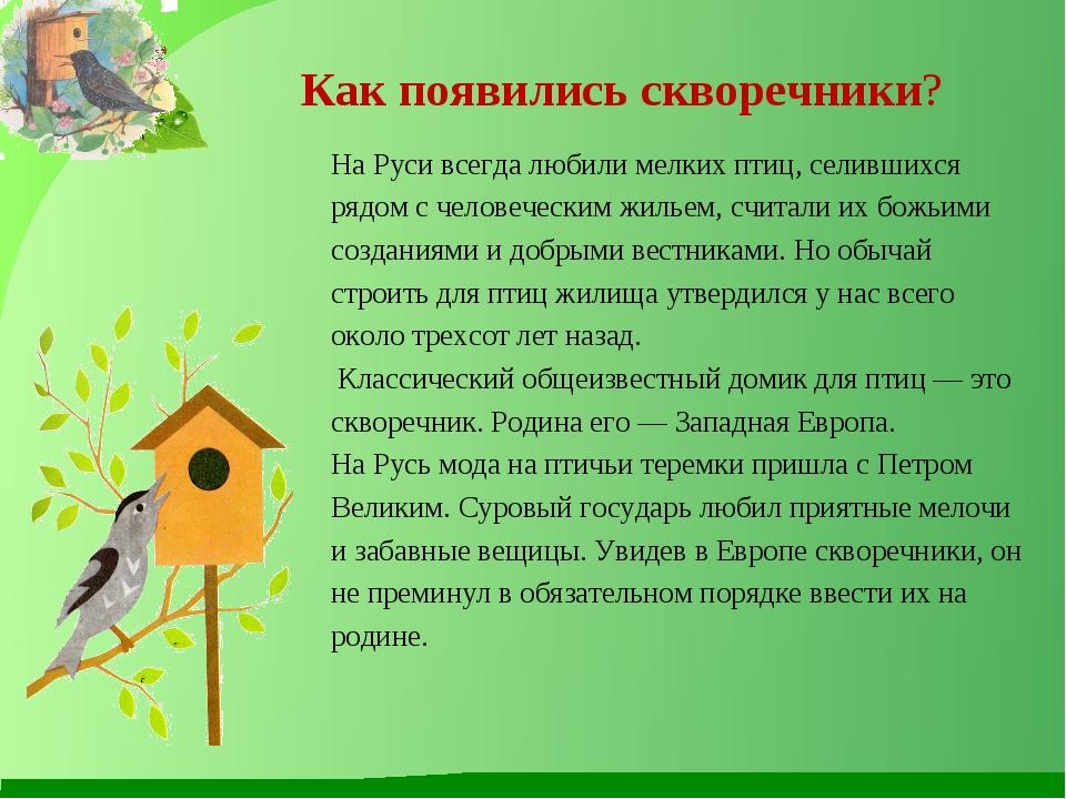 Как появились скворечники? На Руси всегда любили мелких птиц, селившихся ряд...