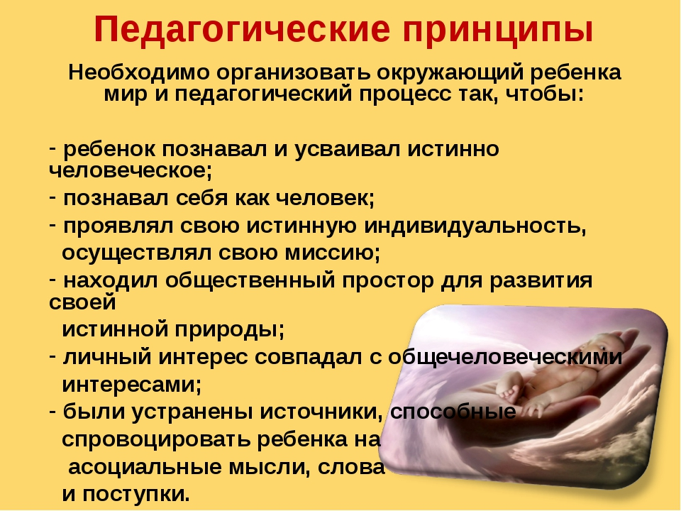 Педагогические принципы Необходимо организовать окружающий ребенка мир и педа...
