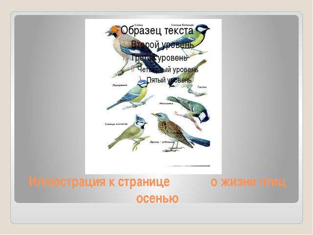 Иллюстрация к странице о жизни птиц осенью