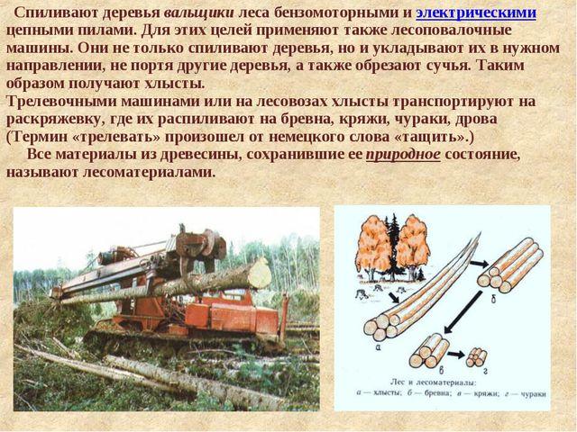 Спиливают деревья вальщики леса бензомоторными и электрическими цепными пила...