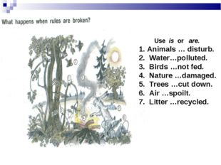 Use is or are. Animals … disturb. Water…polluted. Birds …not fed. Nature …da