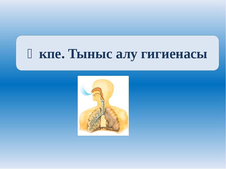 Өкпе. Тыныс алу гигиенасы