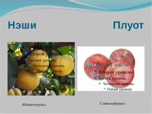 Нэши Плуот Яблоко+груша Слива+абрикос