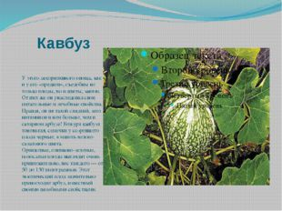 Кавбуз У этого декоративного овоща, как и у его «предков», съедобны не только