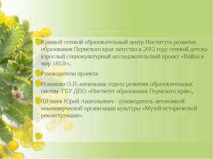 Краевой сетевой образовательный центр Института развития образования Пермско