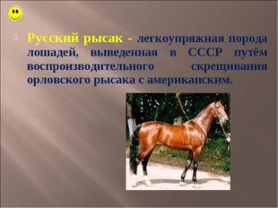 Русский рысак - легкоупряжная порода лошадей, выведенная в СССР путём воспрои