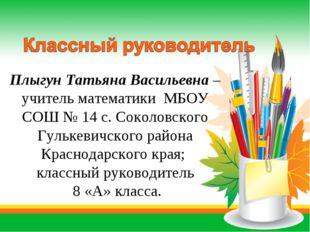 Плыгун Татьяна Васильевна – учитель математики МБОУ СОШ № 14 с. Соколовского