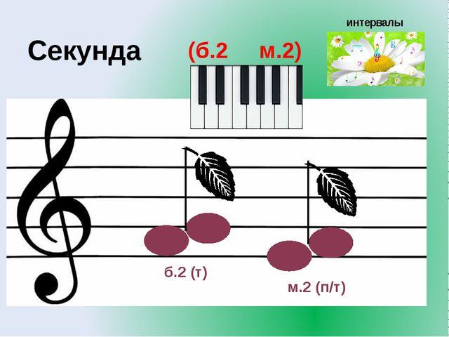 интервалы (б.2 м.2) Секунда б.2 (т) м.2 (п/т)