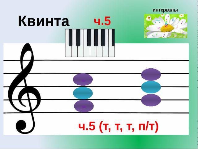интервалы Квинта ч.5 ч.5 (т, т, т, п/т)