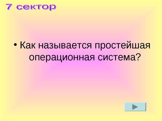 Как называется простейшая операционная система?